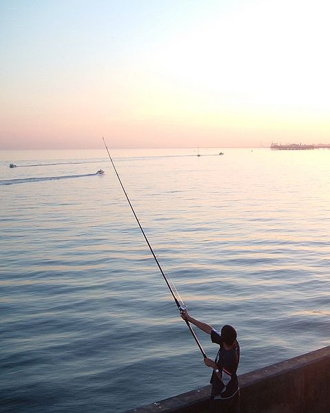 File:Evening angler.jpg